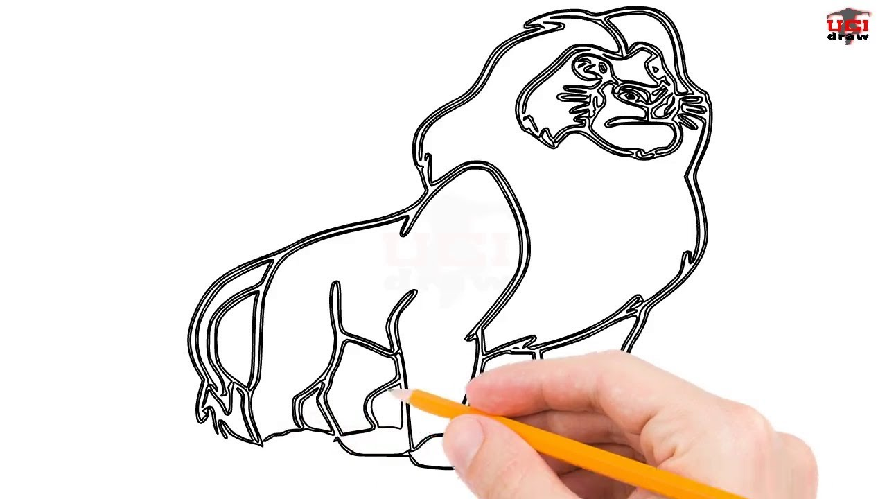 How To Draw The Lion King Step By Step Easy For Beginners Kids