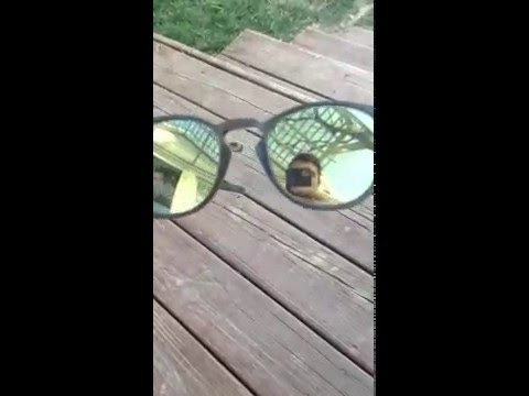 91a5fdce01 Oakley Latch Sunglasses Review (matte olive frame + emerald iridium lens)