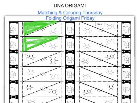 DNA origami coloring instructions - YouTube