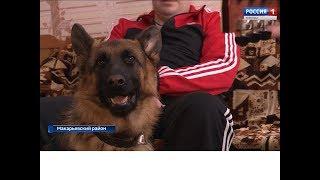 Незрячей семье из посёлка Горчуха передали собаку-поводыря