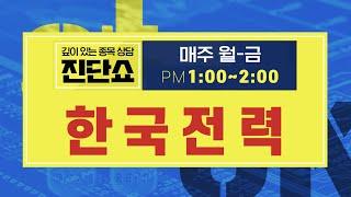 한국전력(015760) / 대표적인 정부 정책 피해주