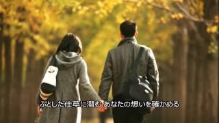 「カムフラージュ」は、 1998(平成10)年11月18日にリリースされた竹内...