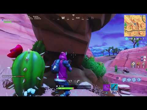 Search Between An Oasis! (Fortnite Battle Royale)