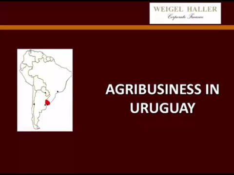 Agribusiness in Uruguay