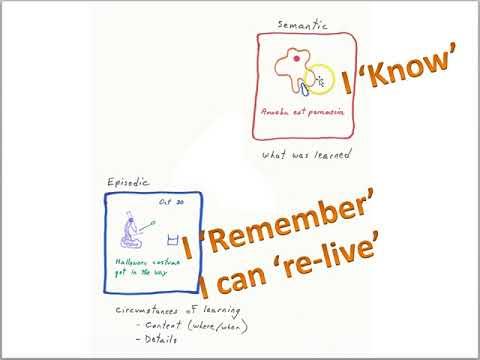 Memory part 1 Episodic and Semantic memory LS