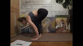 Chaturanga Tips Part 2 Timing and Breath power in the Surya transitions