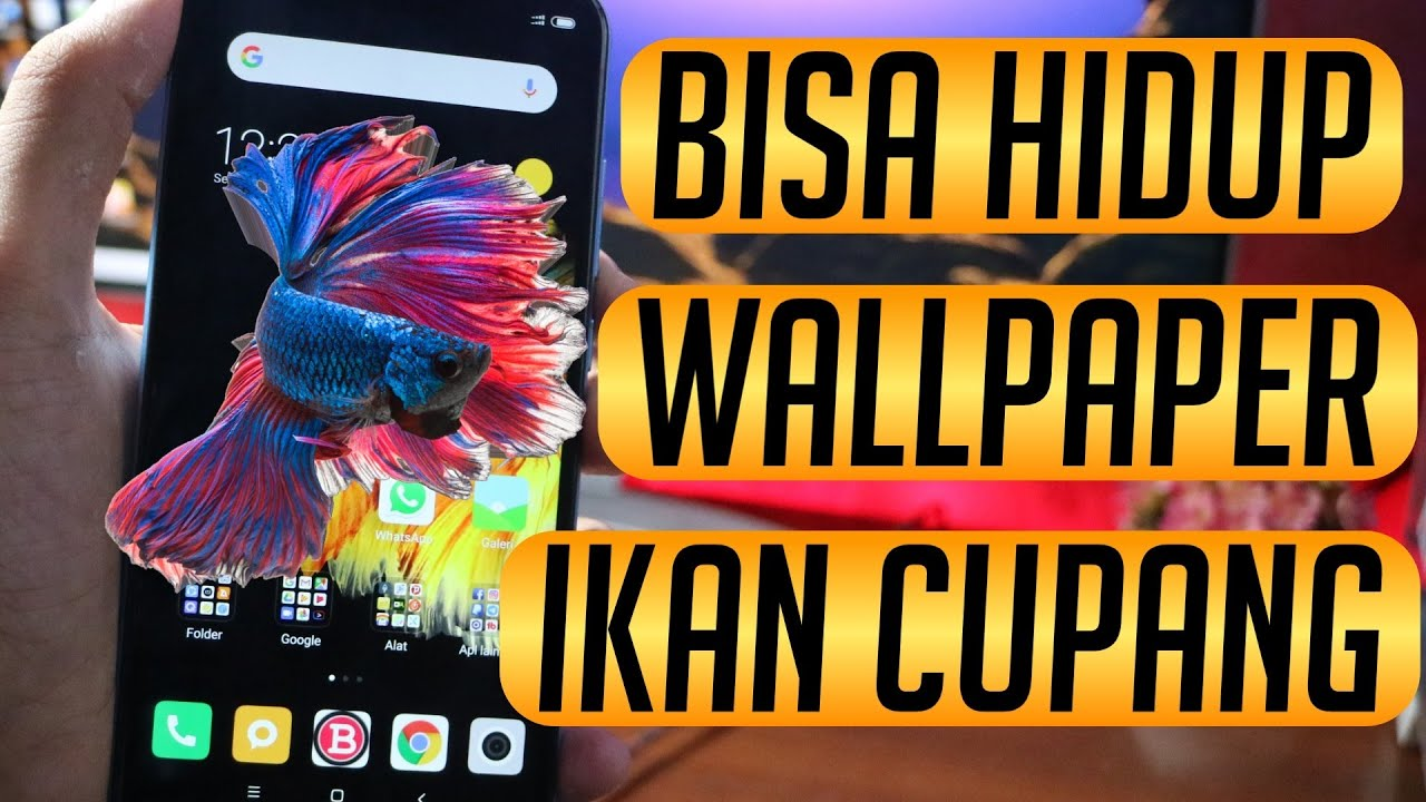 Unduh 400+ Wallpaper 3d Hidup HD