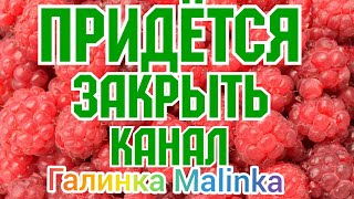 Колесниковы /Придётся закрывать канал /Обзор Влогов /