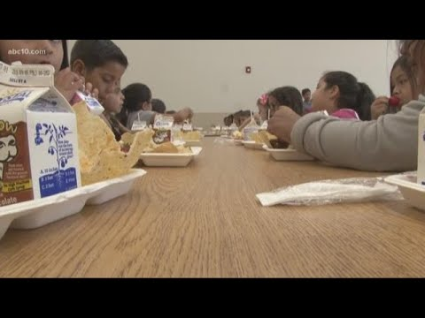 Free Lunch Program: All Modesto Students Get Free Meals, No Questions Asked