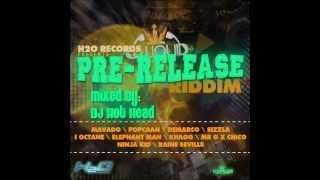 DJ Hot Head - Pre-Release Riddim Mix - August 2012