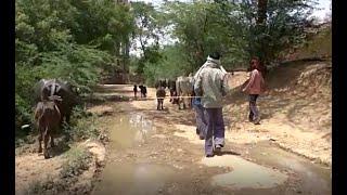 बांदा जिले के औगासी गाँव की दलित बस्ती में विकास की गति शून्य