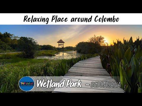 Wetland Park | Travel video Srilanka | Trip Pisso  VLOG #5