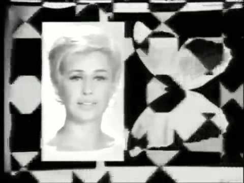 Les papillons noirs 1966