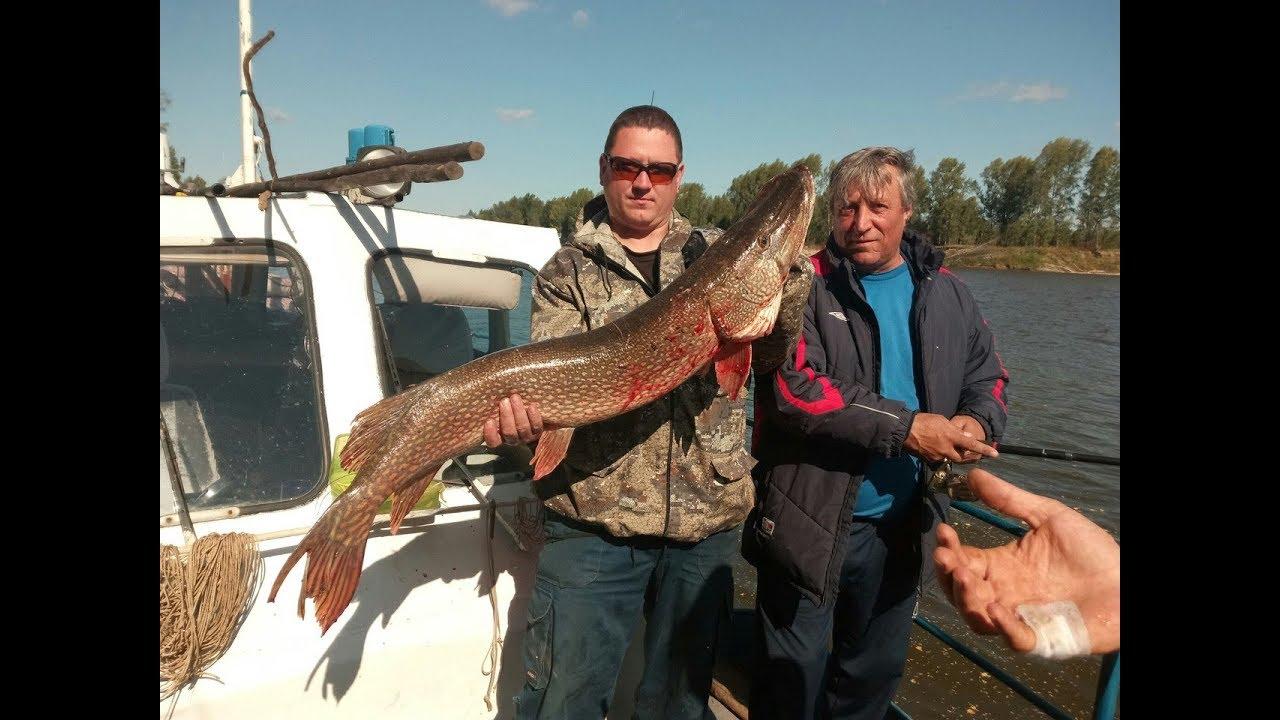 Платная рыбалка в Томской области