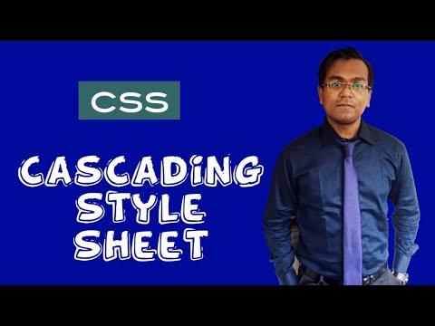 CSS Bangla Tutorial for Beginners    Web Engineering    Web design and development thumbnail