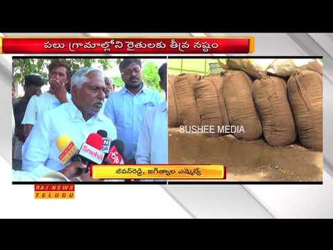 Unseasonal Rains Damage Paddy Crops in Jagtial   Jeevan Reddy   Raj News Telugu