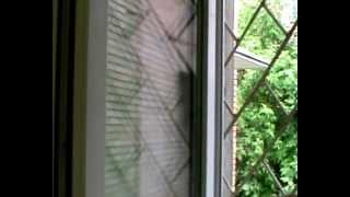 OKHA VEKA новая акция Окна Века(http://www.medvedef.net/ Совместная акция OKHA VEKA & Amway - высокоэффективный очиститель для стекол L.O.C. Plus - В ПОДАРОК ВСЕМ,..., 2012-09-18T08:26:24.000Z)