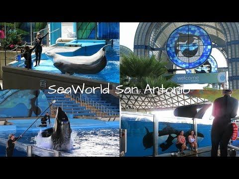 SeaWorld San Antonio   TRAVEL VLOG