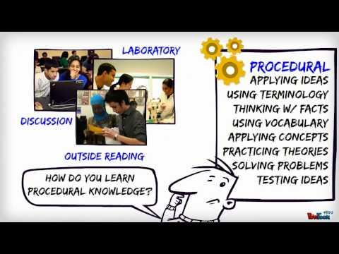 Conceptual v.s Procedural Knowledge