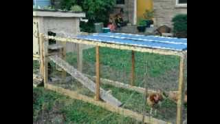 Cheap Easy To Build Chicken Coop Plans | Download Trusted Easy To Build Chicken Coop Plans & Designs