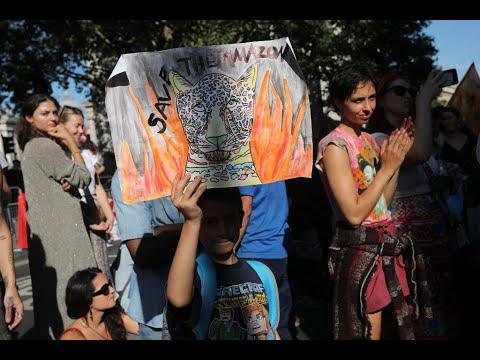 السكان الأصليين وناشطين في مجال البيئة يتظاهرون من أجل غابات الأمازون  - 10:55-2019 / 8 / 24