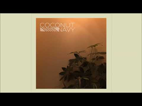 Mark Turn On The Lights - Coconut Navy (NEW Official Audio)