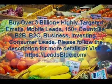 Buy Madagascar Business Email Database - Gasy net - Vidéo clip