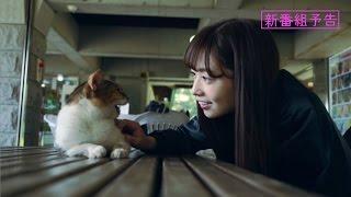 乃木坂46 斉藤優里 『愛の二等辺三角形』