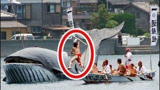 【衝撃】「日本とは分かり合えない」海外が驚愕した日本人の心!日本にしかない捕鯨文化がすごすぎるwww【世界が仰天する日本の力】