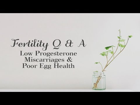 Fertility Q & A - Low Progesterone  Miscarriages & Poor Egg Health