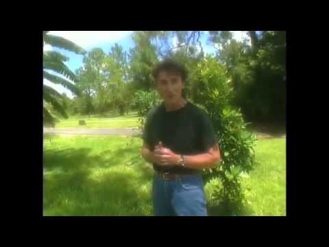 Gary Null - Sustainable Organic Farming in Florida
