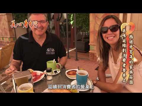 真心看台灣 深杯子布達馬爾它第一道冷壓初榨橄欖油專訪