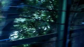 (レア?)JR四国 土讃線 車掌さんの大歩危・小歩危観光案内肉声放送 一部