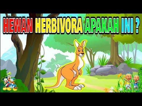 52 Gambar Dan Nama Hewan Herbivora Gratis Terbaru