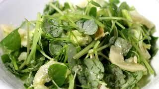 Pansit-pansitan Salad (can cure arthritis and gout)