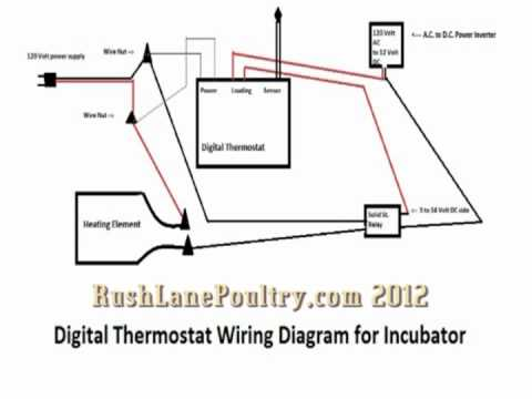 wiring digital thermostat incubator basic wiring diagram u2022 rh rnetcomputer co Home Thermostat Wiring Basic Thermostat Wiring
