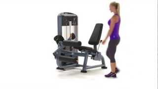 Discovery Series Selectorized Seated Leg Curl - German