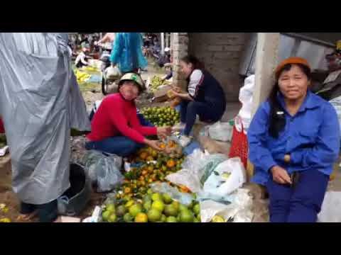 Vietnam Travel, PHIÊN CHỢ VÙNG CAO QUỲ HỢP NGHỆ AN, Quê hương Viêt Nam