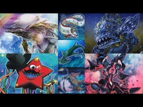YuGiOh (Water) Shark / Coelacanth / Misc. Fish Deck (October 2017)