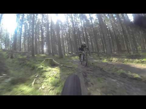 Team Rask cykler i Rold skov.