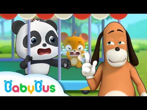 El Plan Secreto de Sr Dao  Dibujos Animados Infantiles  Kiki y Sus Amigos  BabyBus Español