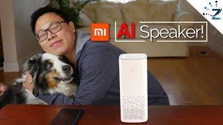 """Xiaomi MI Ai Speaker Review (English): The """"Xiao Ai"""" Predecessor"""