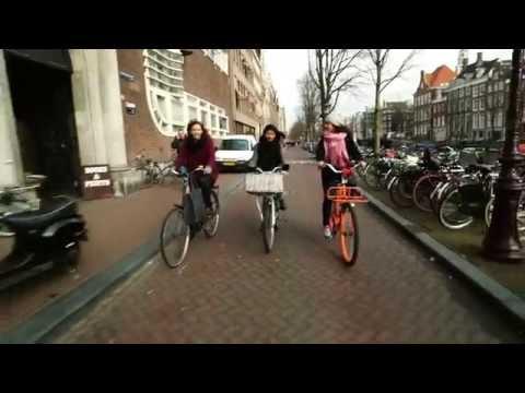 Study, stay, work in Amsterdam