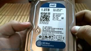 Жесткий диск Western Digital Caviar Blue WD10EZEX 1TB. Распаковка + микрообзор