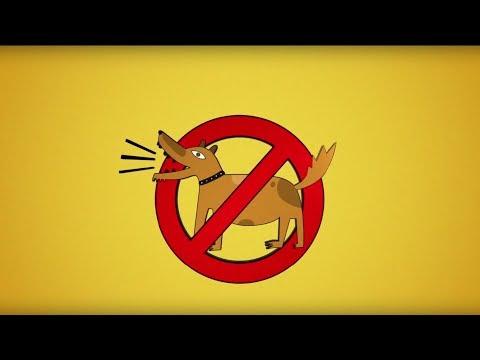 Как заставить собаку не лаять