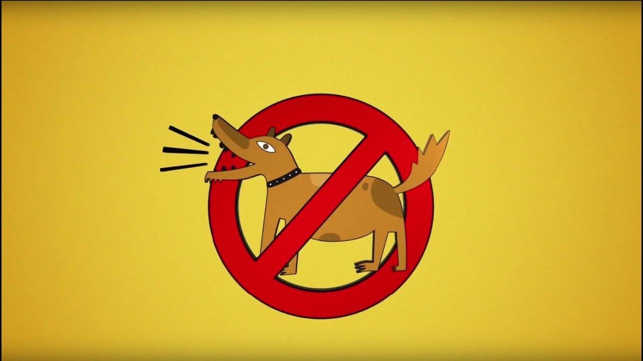 Как отучить собаку лаять?