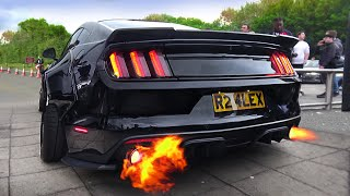 SCARY Ford Mustang V8 Sound Co…