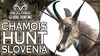 EPIC Chamois Hunting in Slovenia