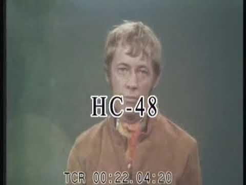 In Your Childhood  Noel Harrison