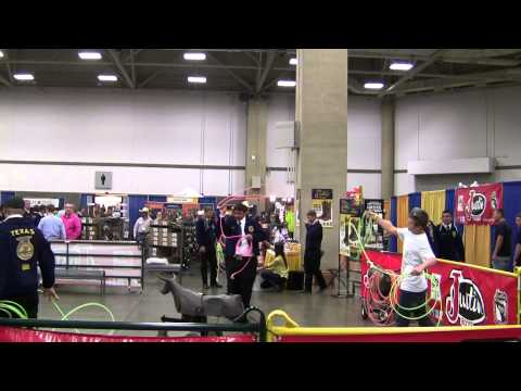 2013 Texas FFA Convention Chronicle Report